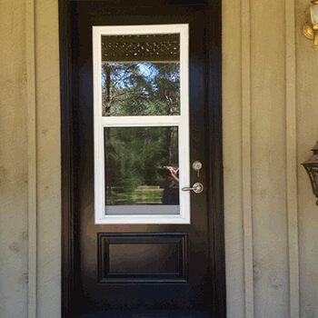 Door With Window