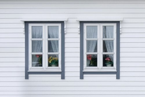 white siding of a house with two windows