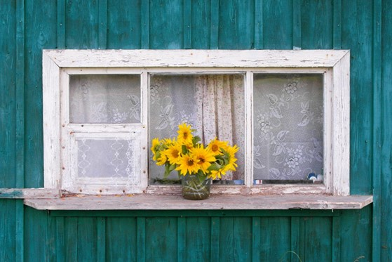Is it Time to Replace Your Old Windows